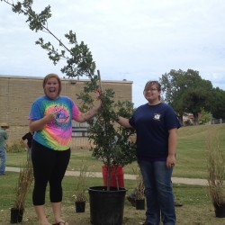 Outdoor classroom landscaping