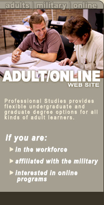 Professional Studies Web Site